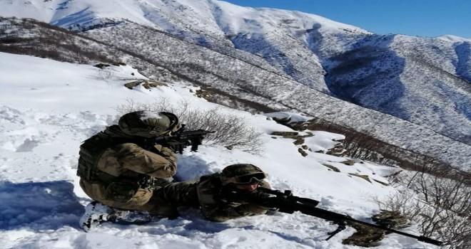 Bitlis'te PKK'nın 'sığınacak yeri' kalmadı