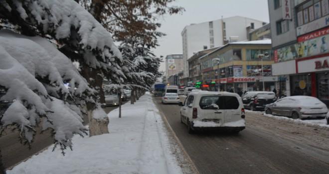 Tatvan'da kar yağışı etkisini sürdürüyor
