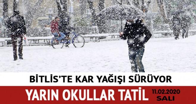 Bitlis il merkezi ve ilçelerde yarın okullar tatil