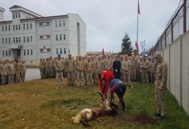 Tatvan'da askerler için kurban kesildi