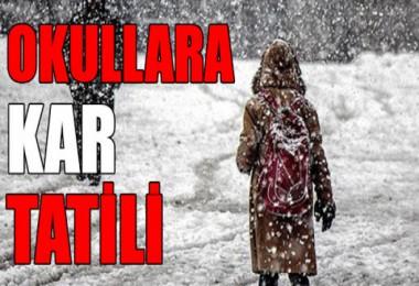 Bitlis il merkezi, Tatvan ve Ahlat ilçeleri ile Adilcevaz köylerinde okullar tatil edildi