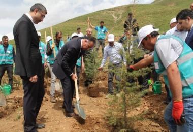 Bitlis'te Adalet Ormanı oluşturuldu