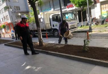 Tatvan'ın yeşile bürünmesiiçin belediye düğmeye bastı