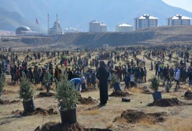 Bitlis'te fidan dikimine büyük katılım
