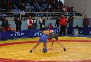 Tatvan'daki güreş yarışması başladı