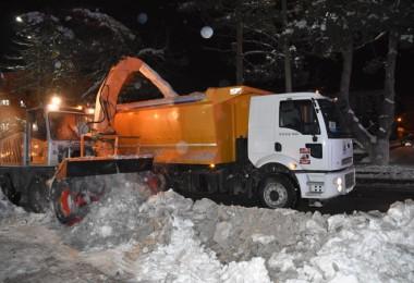 Tatvan çarşısından 765 kamyon kar yerleşim alanı dışına taşındı