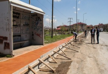 Bitlis'te kaldırım çalışmalarına başlandı
