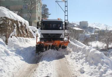 Bitlis Belediyesi'nin kar temizleme seferberliği sürüyor