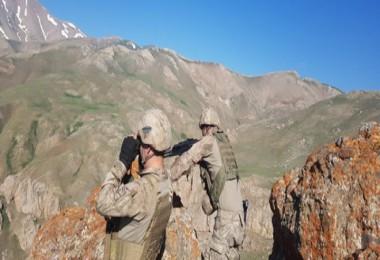 Gri kategoride aranan terörist Bitlis'te etkisiz hale getirildi