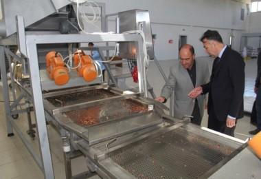 Vali Çağatay, Organize Sanayi Bölgesi'ni inceledi