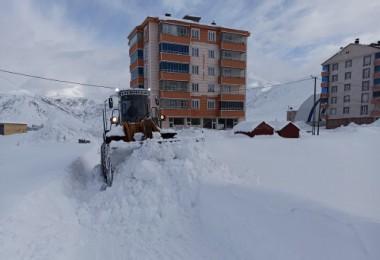 Bitlis'te karla mücadele çalışmaları