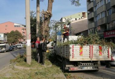 Tatvan Belediyesi'nin kışa hazırlık çalışmaları