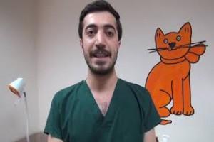 Sağlık çalışanları lösemiye dikkat çekmek amacıyla video hazırladı - Bitlis13haber