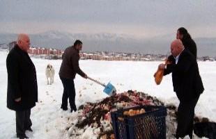 Tatvan'da yaban ve sokak hayvanları için belirli yerlere yiyecek bırakıldı